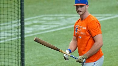 Mets' Pete Alonso loving Tampa homecoming: 'Truly a blessing'