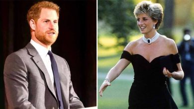 Prince Harry Opens Up About The Pain He Went Through After Princess Diana