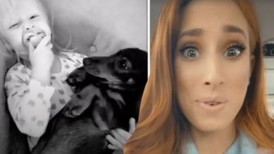 Stacey Solomon brands son Rex 'feral' as she films him sharing his dummy with dog Peanut