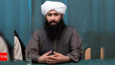 Taliban warns neighbouring countries against allowing US military bases - Times of India