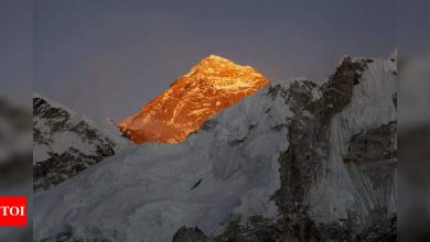 Two foreign climbers die on Everest: Expedition agency - Times of India