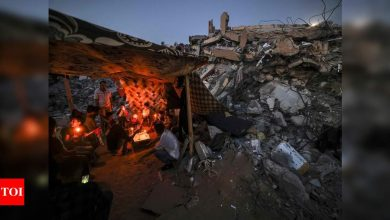 UN body asked to up scrutiny of Israel's human rights record - Times of India
