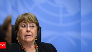UN rights chief Michelle Bachelet says Israeli strikes on Gaza may be war crimes - Times of India