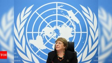 UN rights chief urges lowering Gaza tensions - Times of India