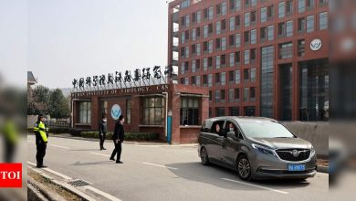 Wuhan lab staff sought hospital care before Covid-19 outbreak disclosed: WSJ - Times of India