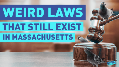 WATCH: We Rated Some of Massachusetts' Weirdest Laws