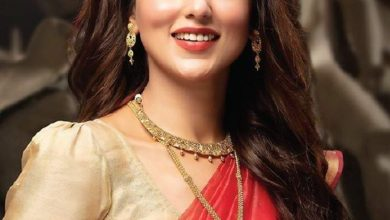 10 times Mimi Chakraborty made heads turn with her saree looks