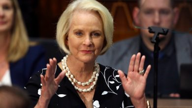 Biden Nominates Cindy McCain to UN Food and Agriculture Post