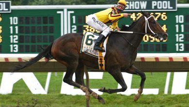 New Jersey gets it right with fixed-bet horse wagering