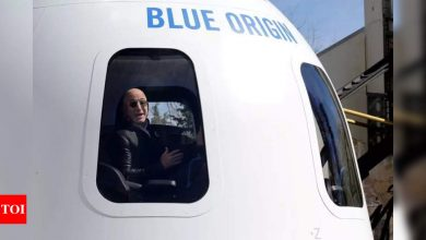 $28 million: The cost of riding into space with the world's richest man - Times of India