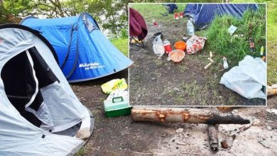 'Abusing their position': Scottish park rangers slammed for waking up & forcing campers on