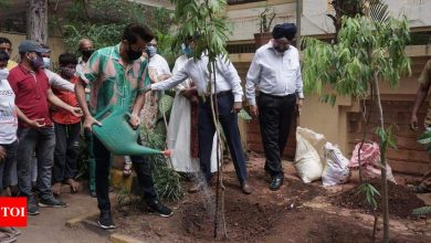 Anil Kapoor celebrates #WorldEnvironmentDay with a tree plantation campaign - Times of India