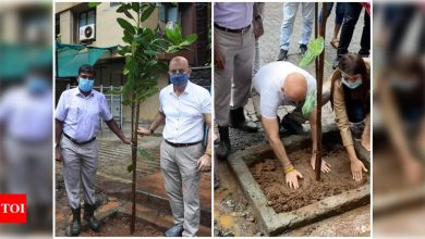 Anupam Kher expresses gratitude to Mumbai government as he actively engages in a tree plantation campaign - Times of India