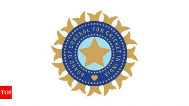 BCCI to bid for 2025 CT, 2028 T20 WC and 2031 ODI WC during next cycle   Cricket News - Times of India