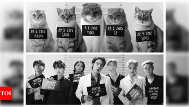 BTS' 'Butter' music video cover by cats is the newest viral clip on the internet and it is 'purrfect' - Times of India