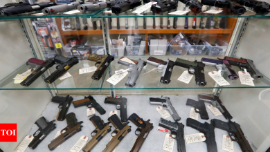 Background checks blocked a record high 300,000 gun sales - Times of India