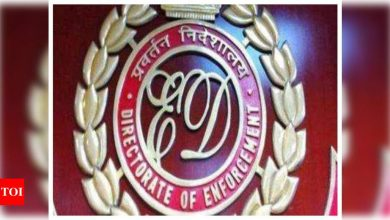 ED summons 3 top fashion designers in connection with money-laundering case - Times of India