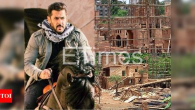 Exclusive! Salman Khan's 'Tiger 3' set to be demolished, makers face loss of 8-9 crore - Times of India