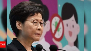 Hong Kong leader says press must not 'subvert' government - Times of India