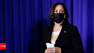 Kamala Harris engages Mexico on complexities of migration - Times of India