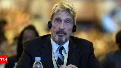 McAfee antivirus software creator dead in Spanish prison - Times of India