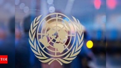 Security Council to recommend next UN chief this month - Times of India