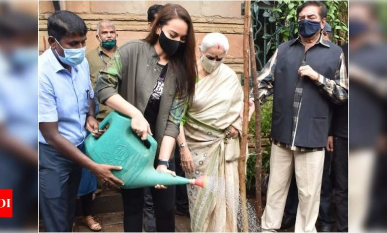 Sonakshi Sinha encourages fans to replant and adopt trees that were uprooted due to Cyclone Tauktae - Times of India