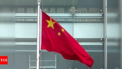 WHO chief asks China to cooperate with probe into origins of Covid-19 - Times of India