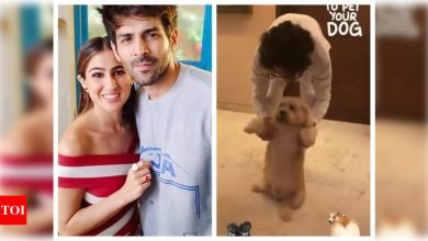 Watch: Sara Ali Khan's latest video of brother Ibrahim and their fur buddy has a Kartik Aaryan connection, check it out! - Times of India