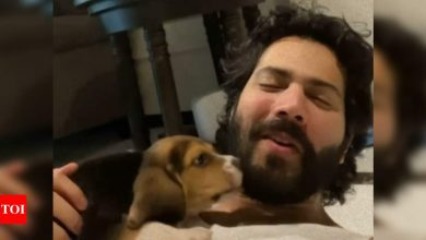 Watch: Varun Dhawan talks about 'fatherhood' as he welcomes a new member to the family - Times of India
