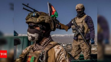 '109 terrorists killed in southern Afghanistan battles' - Times of India
