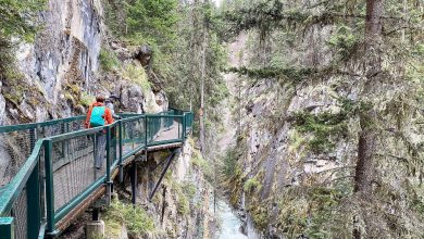 Cycling in Banff National Park is a must-do experience