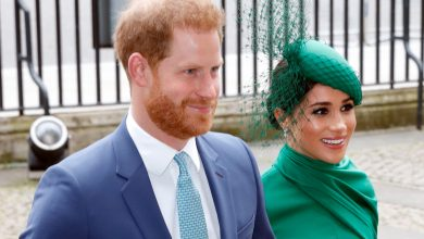 Meghan Markle and Prince Harry working on Netflix animated series