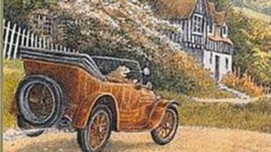 Why Tories are like car-obsessed Mr Toad, careering towards destruction in the name of liberty –Joyce McMillan