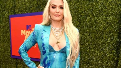 Attorney Investigates Erika Jayne's Private Jet Ride, Claims RHOBH Star 'Blocked Witnesses From Speaking' as Victims Set Up GoFundMe