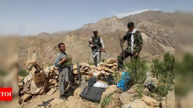 Afghan govt meets Taliban in Tehran: Iran ministry - Times of India