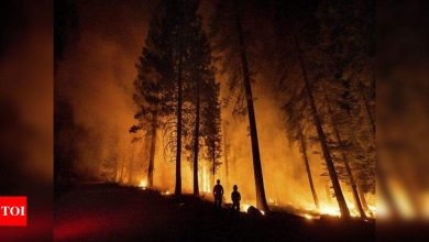 California wildfire flares but within line crews have built - Times of India