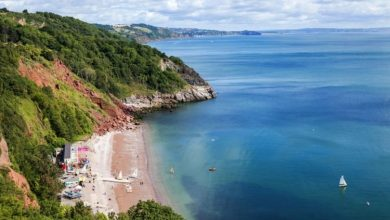 English Riviera: What to do in England's answer to the South of France - staycation tips