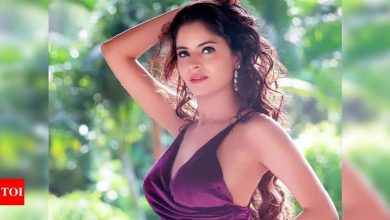 Gehana Vasisth's lawyer on applying for pre-arrest anticipatory bail: There was a chance that she would have got arrested by the police - Times of India