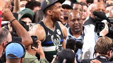 Giannis Antetokounmpo will never be forgotten after this