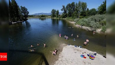 Hundreds of deaths could be linked to Northwest heat wave - Times of India