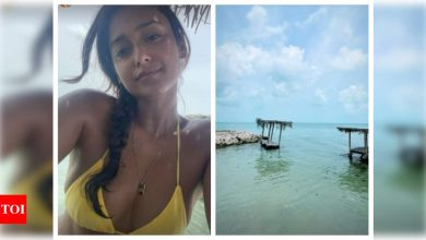 Ileana D'Cruz's tanned picture from her beach holidays will make you crave for a vacation - Times of India