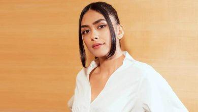Mrunal Thakur Says Farhan Akhtar Taught Her To Get Out Of Comfort Zone