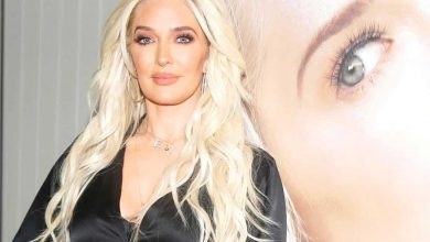 """RHOBH Star Erika Jayne Slams Attorney Hired to Investigate Her as """"Low Budget"""" and Thanks Comedian Who Suggests Fans Should """"Free Erika"""" Amid Her Legal Troubles"""