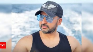 Raj Kundra planned to launch another app after 'Hotshots' was blocked - Reports - Times of India