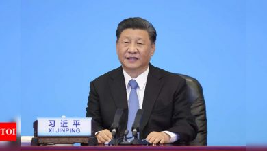 'Xi Jinping anxious to maintain his grip on Chinese Communist Party ' - Times of India