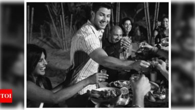 You just cannot miss this UNSEEN photo of Priyanka Chopra and Nick Jonas from their Miami trip - Times of India