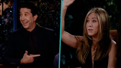 Are They or Aren't They? David Schwimmer Sets Jennifer Aniston Dating Rumors Straight