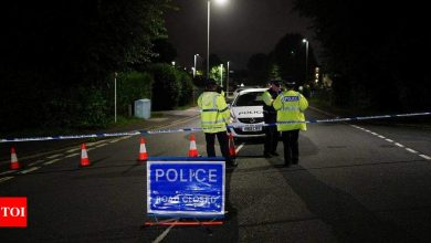 6 killed in shooting incident in UK city of Plymouth - Times of India