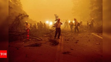 Aircraft help fight California wildfire as smoke clears - Times of India